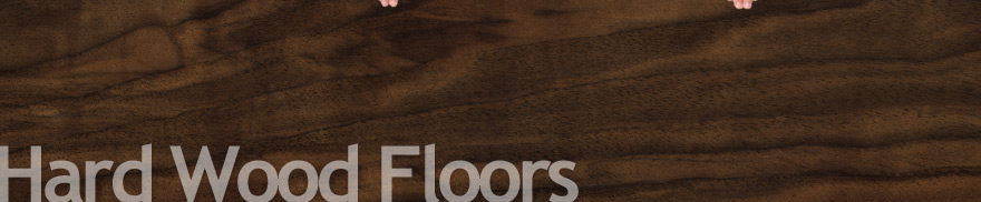 refinishing wood floor Austin,TX