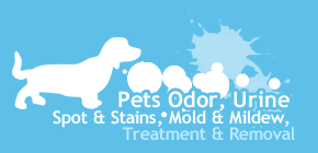 Austin pet odor and stain removal