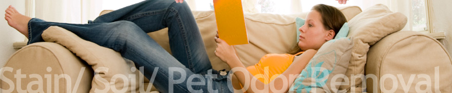 Upholstery Cleaning Carpetcleaningaustintx Com